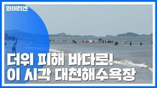 더위 피해 바다로...서해 대천해수욕장 / YTN