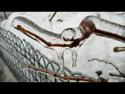 Hibernal 5 (freezing Rain Pictures)