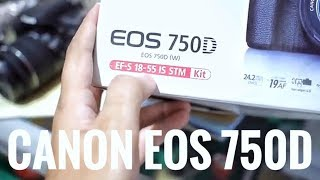 CANON EOS 750D LENSA FIX 50mm STM #VIP ( eps 50 )