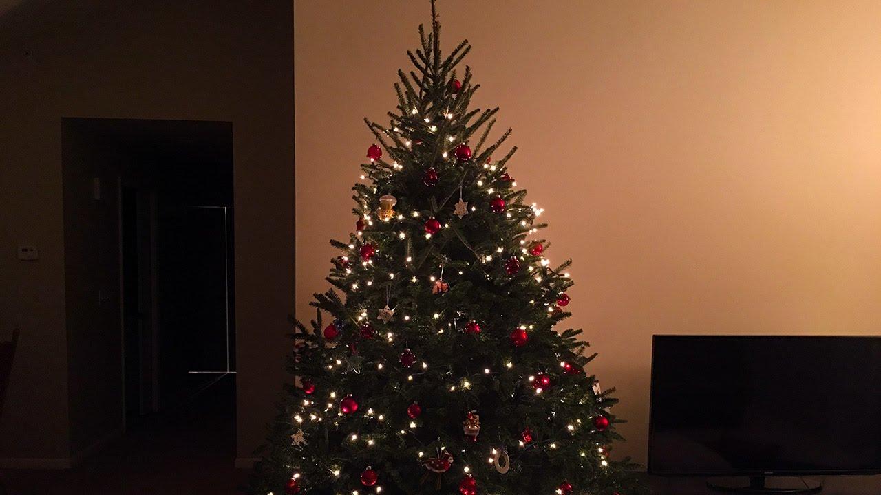 My Christmas Tree! - YouTube