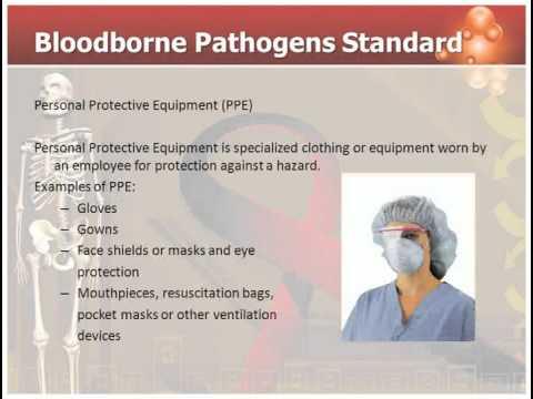 Bloodborne Pathogens Standard Youtube