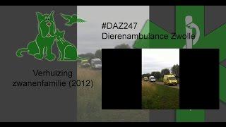 Dierenambulance Zwolle #DAZ247 Verhuizing zwanenfamilie (2012)