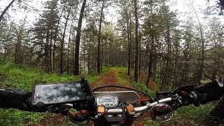 Jungle Enduro ride on a Honda XR250 | Enduro SriLanka motovlog#17