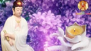 Gambar cover Thờ Thỉnh Tượng Phật Sao Cho Đúng - Đừng Mê Lầm Làm Trái Nhân Quả - Rất Hay Nên Nghe