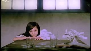 [Vietsub +Kara] Đôi cánh vô hình/隐形的翅膀 - Trương Thiều Hàm - KSTC