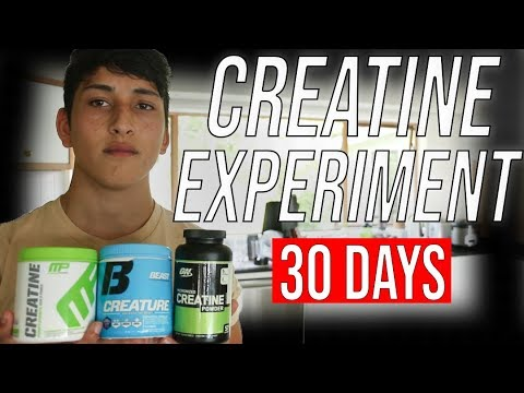 CREATINE Experiment 30 DAYS | Results | Side Effects