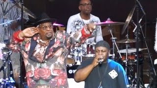 "George Clinton & P-Funk- ""Not Just Knee Deep""  Artscape 2015 Baltimore, MD"