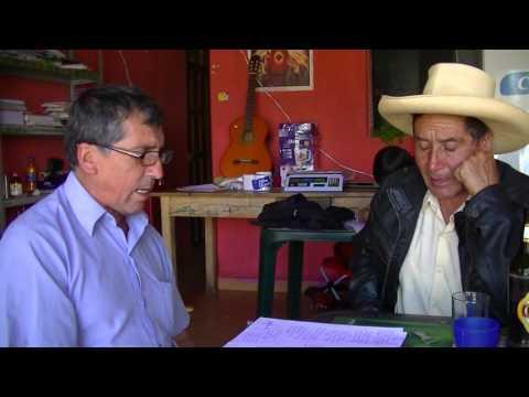 Manuel Estela Bashi Díaz - Mi gallo Blanco
