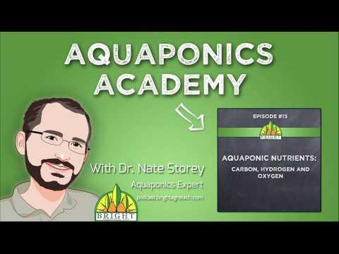 Aquaponics Academy #15: Aquaponic Nutrients