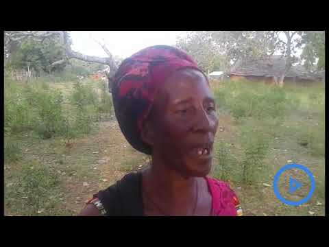 Nyumba Kumi elders admit taking cash to settle domestic violence cases for lack of salary