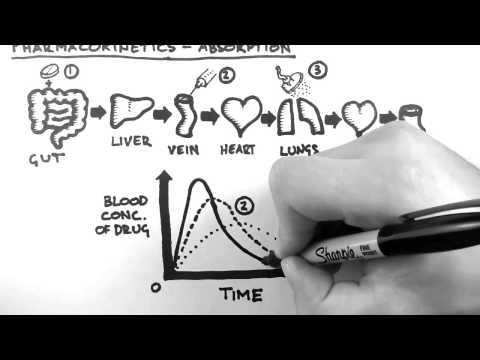 Pharmacokinetics 2  - Absorption