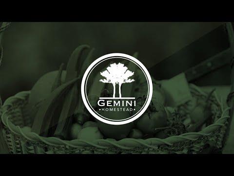 Gemini Homestead YouTube
