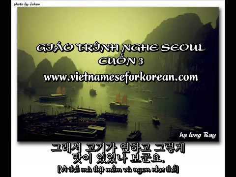 Giáo trình nghe Seoul Cuốn 3 Bài 13,14 và 15 [www.vietnameseforkorean.com]