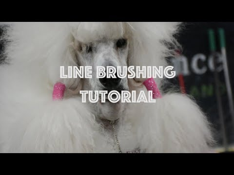 Line Brushing Tutorial