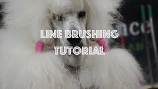 Line Brushing Tutorial