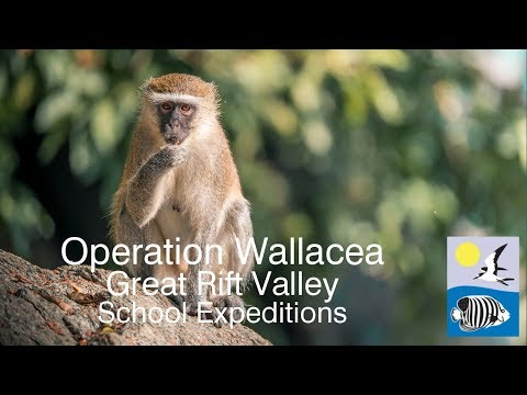 Operation Wallacea - Great Rift Valley Schools Expeditions
