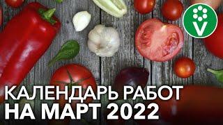 НЕ УПУСТИТЕ ВРЕМЯ! Что посеять в марте 2021 г, а также важные работы в саду и цветнике