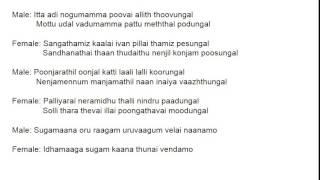 Meenamma meenamma Rajadhi Raja Karaoke