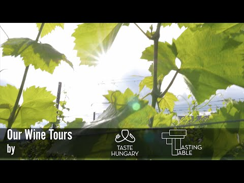 Wine Tours in Hungary