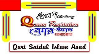 Quran recitation | কোরআন তেলাওয়াত | Tilawat-e-Quran | Qari Saidul Islam Asad | Rtb Waz 2019