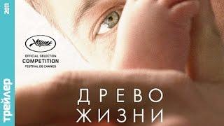 Трейлер к фильму Древо Жизни