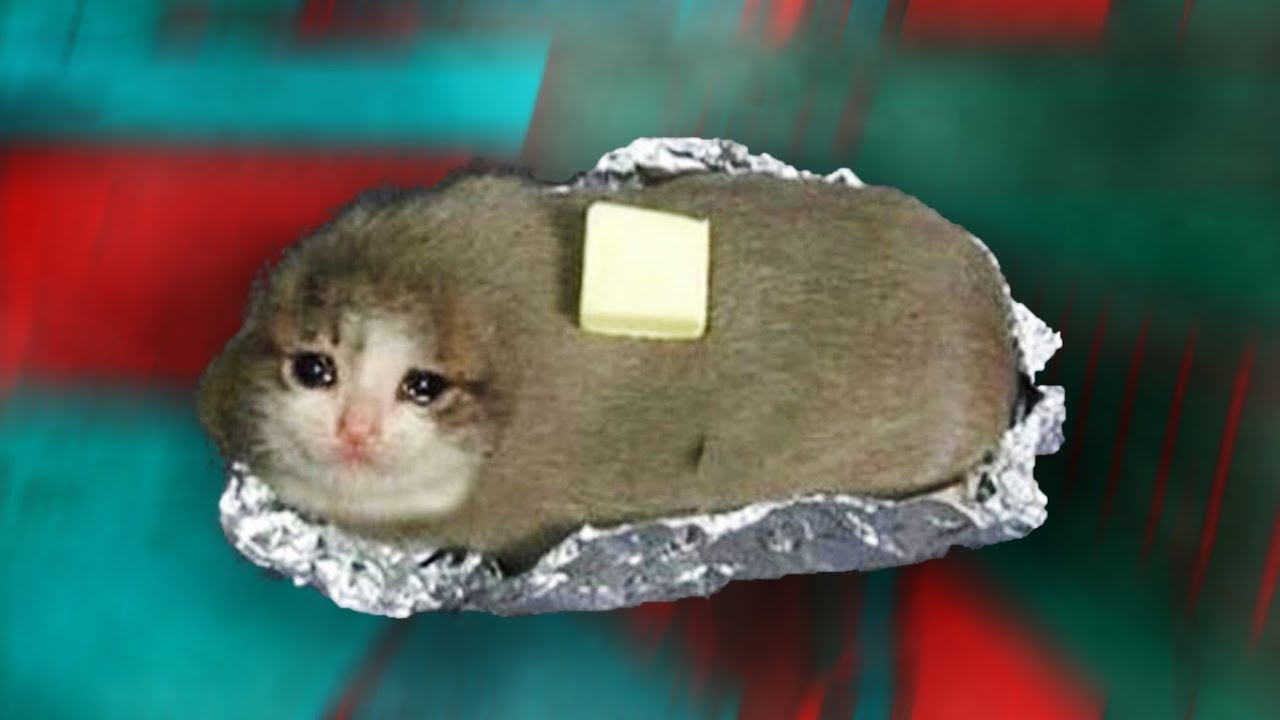 Cat Meme Don T Be Sad
