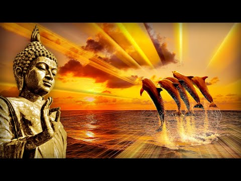 Raise Self Love & Positive Energy | 528Hz Full Body Regeneration | Miracle Healing Meditation Tunes
