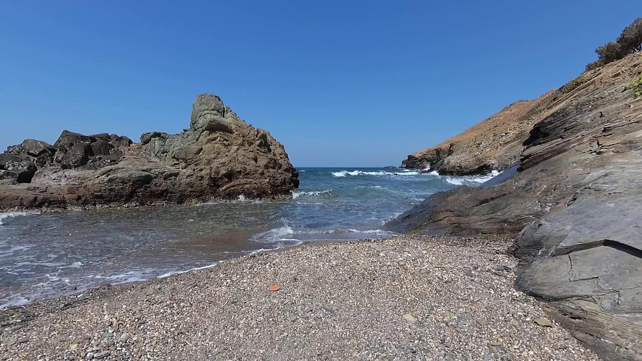 пиратов новые фото дикий пляж группа инфекций