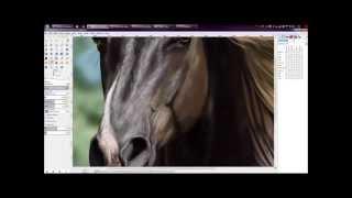 SpeedPaint: Realistic Rocky Mountain x Haflinger Thumbnail