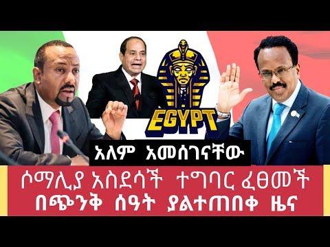 Ethiopia- ሶማሊያ በጭንቅ ሰዓት ያልተጠበቀ ተግባር ፈፀመች አለምን አነጋገረች በጭንቅ ሰዓት መልካም ዜና