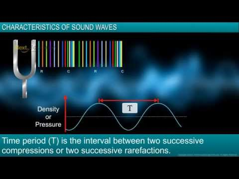 CBSE IX Physics Sound - Characteristics of Sound Waves