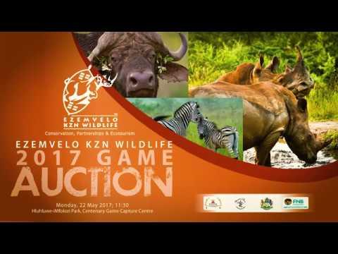 Auction clip 2017