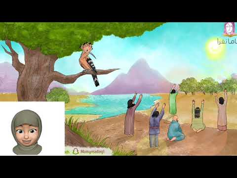 قصص الأنبياء - قصة سليمان عليه السلام