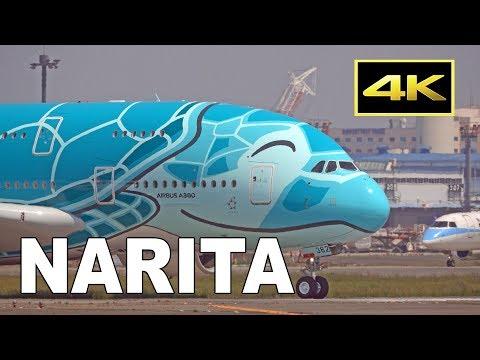 [4K] 42 Big Jets Plane Spotting At Tokyo Narita Airport / 成田空港 JAL ANA