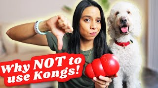 Most DANGEROUS Dog Toy?! 👎 How you SHOULD NEVER use a kong, seriously! 😱