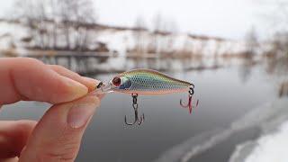 БЕЗОТКАЗНАЯ ПРОВОДКА на Весеннего ОКУНЯ Азартная Рыбалка ВЕСНОЙ на СПИННИНГ