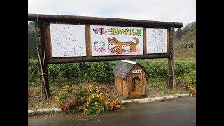 「マリと三匹の子犬の村」の看板・犬小屋