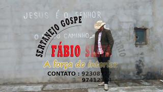 Baixar Deus Não Deixou-me Desistir - Fabio Silva