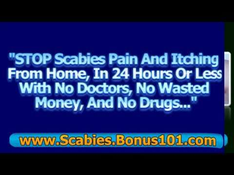 Scabies in dogs home treatment