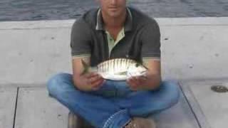 Balık Tutkusu 1