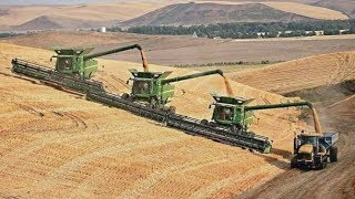 Getreideernte Extrem | Mähdrescher u. Traktoren v. Claas | New Holland | Fendt | John Deere