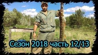 4 месяца в тайге Сезон 2018 часть 12/13 Сидоровск. Рыбалка , Вертушка