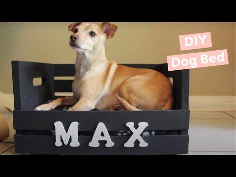 DIY Dog Bed (for small dogs!) - HGTV Handmade