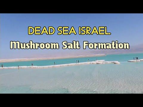 Dead Sea Mushroom Salt Formation In Israel