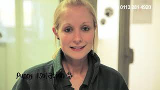 Dogs Trust Leeds: Take A Look Around!