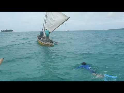 building artificial reefs in Haiti