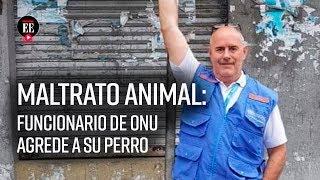 Maltrato animal: funcionario de la ONU agredió sin piedad a su perro | Noticias | El Espectador