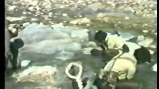 Eritrea, documentary of 1970s and 80s Awet Nhafash 1991 P3