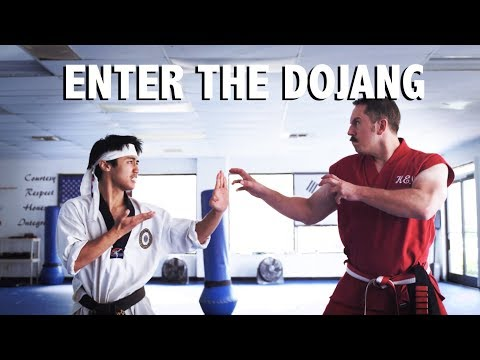 100 Ways To Attack The Groin Master Ken Doovi