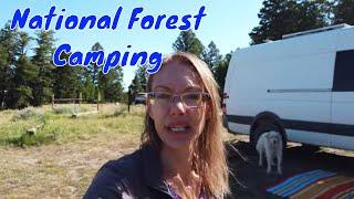 Grand Teton Wyoming -National Forest Camping - Van life